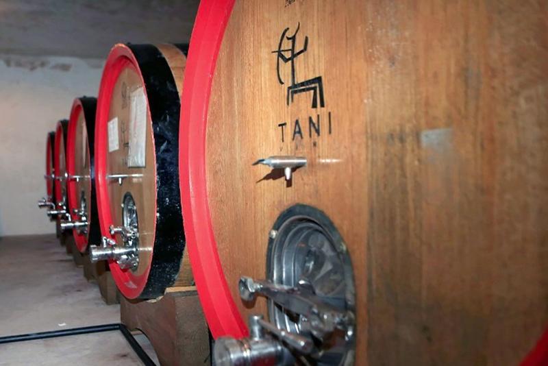 Cantina Tani | Monti